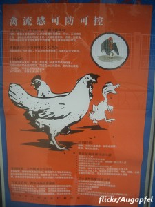 鳥インフルエンザ、台湾で初の患者確認 感染拡大は食い止められるのか?