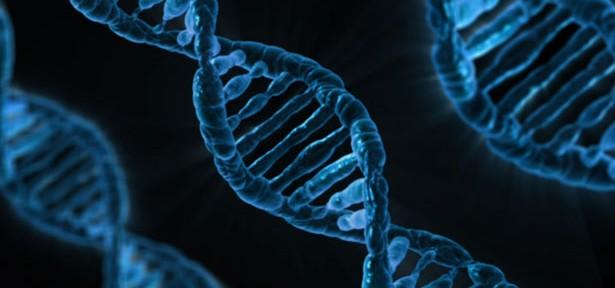 米最高裁、遺伝子に特許認めず バイオテクノロジー業界への影響は?