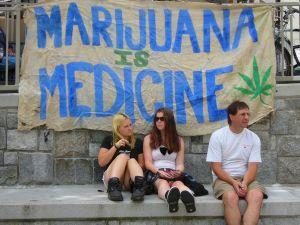 """ハーバード大""""大麻合法化の経済効果は87億ドル"""" 規制や裁判の費用も節約"""