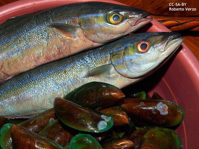 """日本人の魚消費量、マレーシア以下に """"長寿の秘訣""""がなぜ? 海外紙報道"""