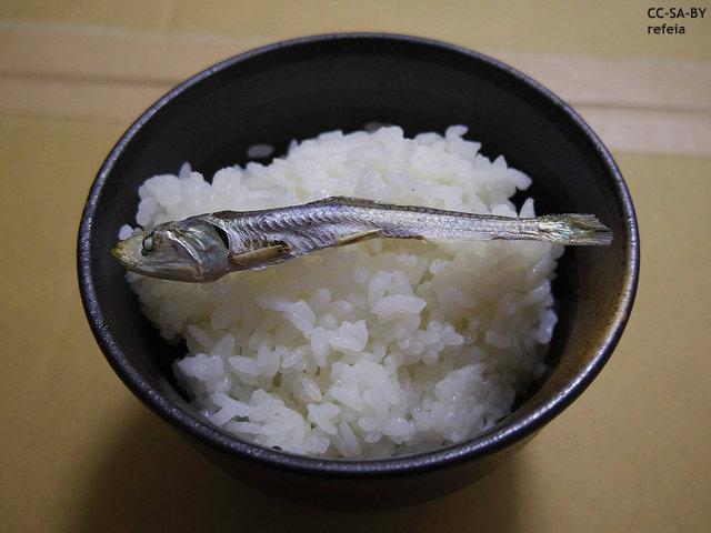 """日本の""""銘柄米""""に注目の東南アジア 日本は米を輸出すべき…輸出増大に現地メディア期待"""