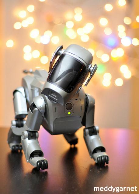 """""""日本らしい…"""" ペットロボットの「死」を悼む人々 海外から驚きと共感"""