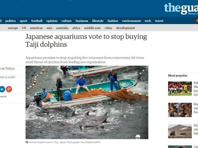 """追い込み漁のイルカ購入禁止、英豪メディア歓迎 """"巨悪に立ち向かった""""豪女性を賞賛"""