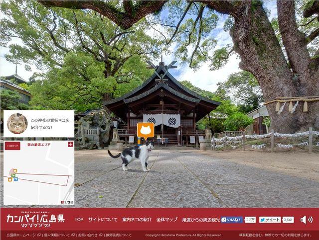 猫好き日本、猫目線のストリートビューまで…海外も興味津々 村上春樹の小説のよう?