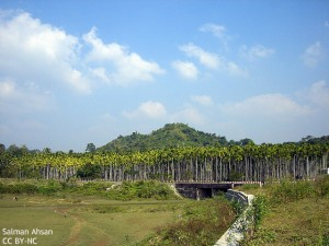 bangladesh_rangpur
