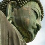 25年以内に4割の寺院が消滅 海外から惜しむ声